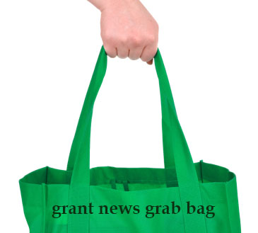 grant news about sequestration affecting domestic violence programs and research grants, education poverty grants in Illinois, increase in endowments among small U.S. private foundations