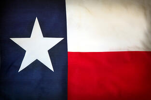 Texas flag, lone star state flag, Harris County interview on grants management