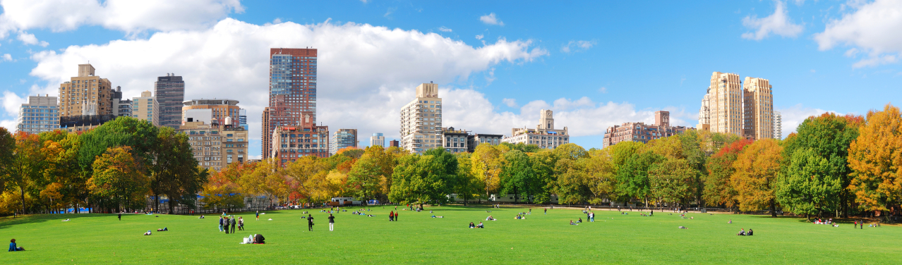 Panorama of an urban park with cityscape in background