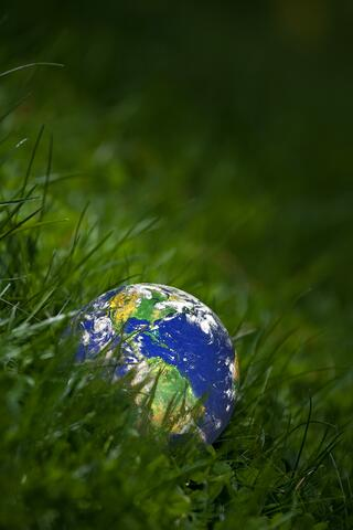 Earth Laying in Grass in an Article About Earth Day Grants