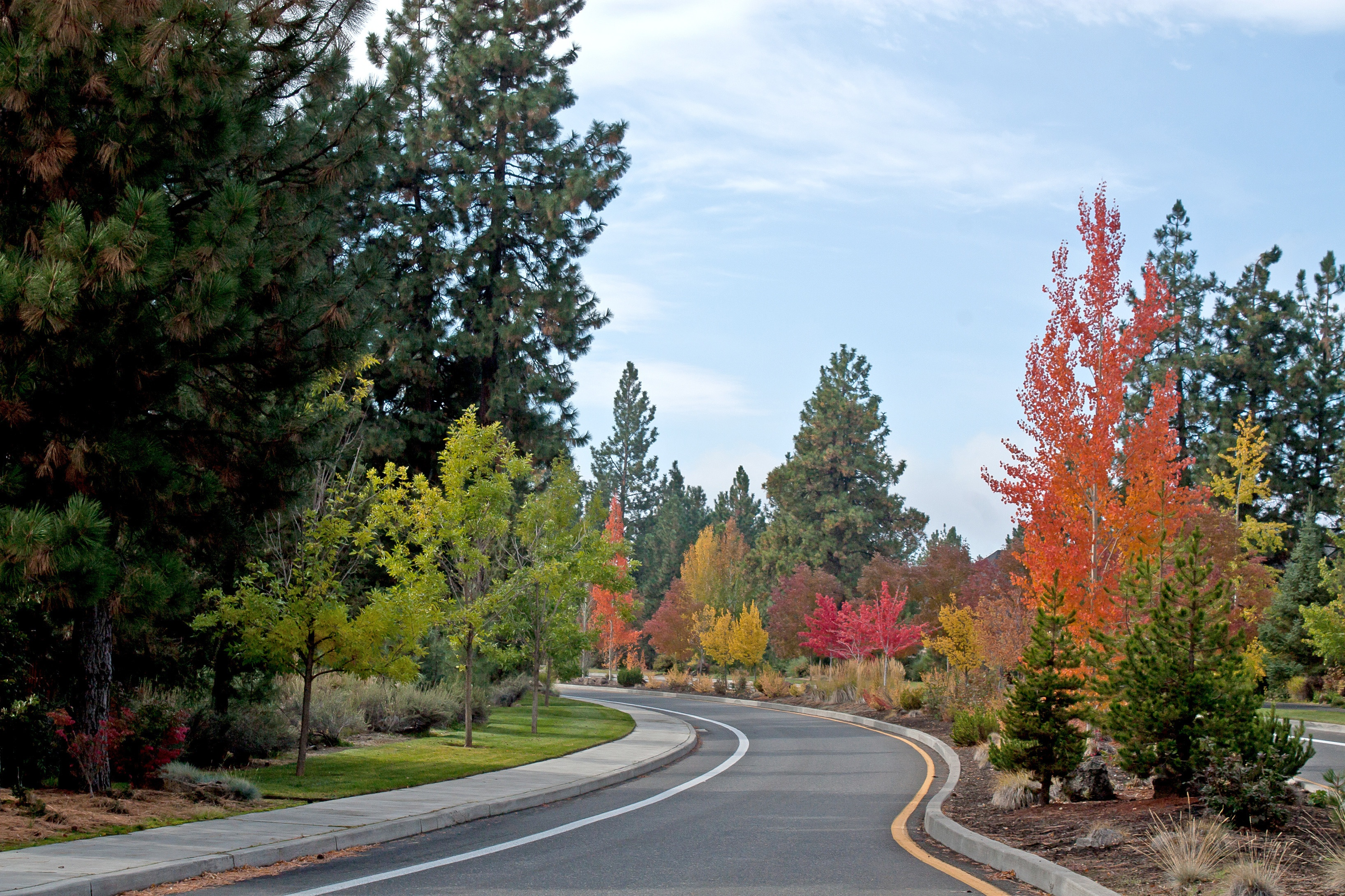 autumn-street-in-post-about-wildfire-prevention
