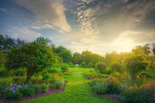 Garden Scene in an Article About the Byrne Criminal Justice Innovation Program and Grants for Crime Reduction