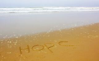 Hope Writing on the Beach in an Article on the  Government's Response to the Opiate Abuse Crisis