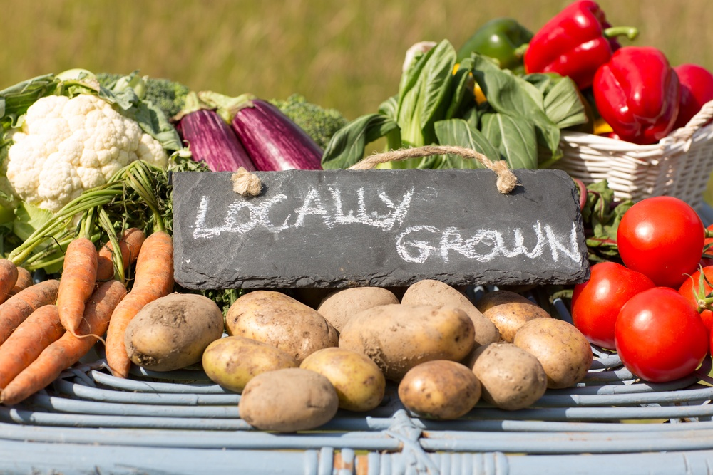 locally-grown-produce-in-an-article-about-the-farm-to-school-program