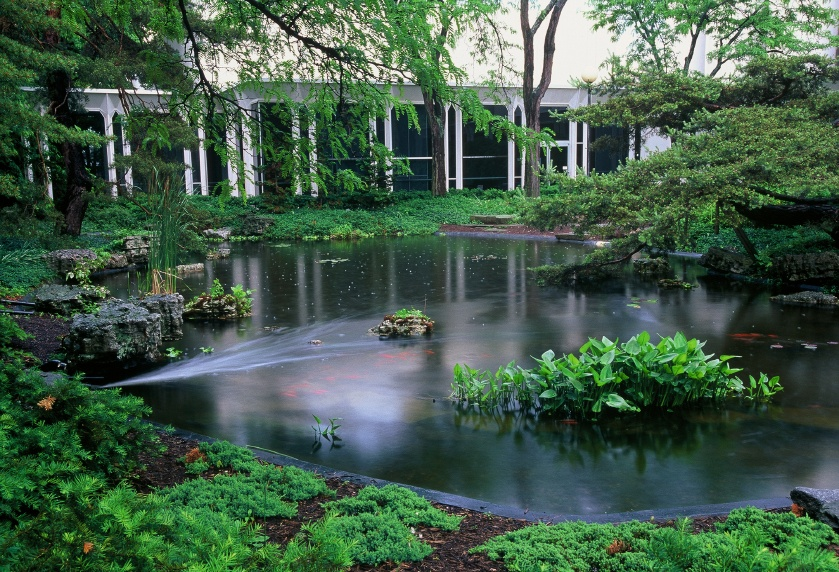 Oberlin_Fish_Pond_During_Rain.jpg