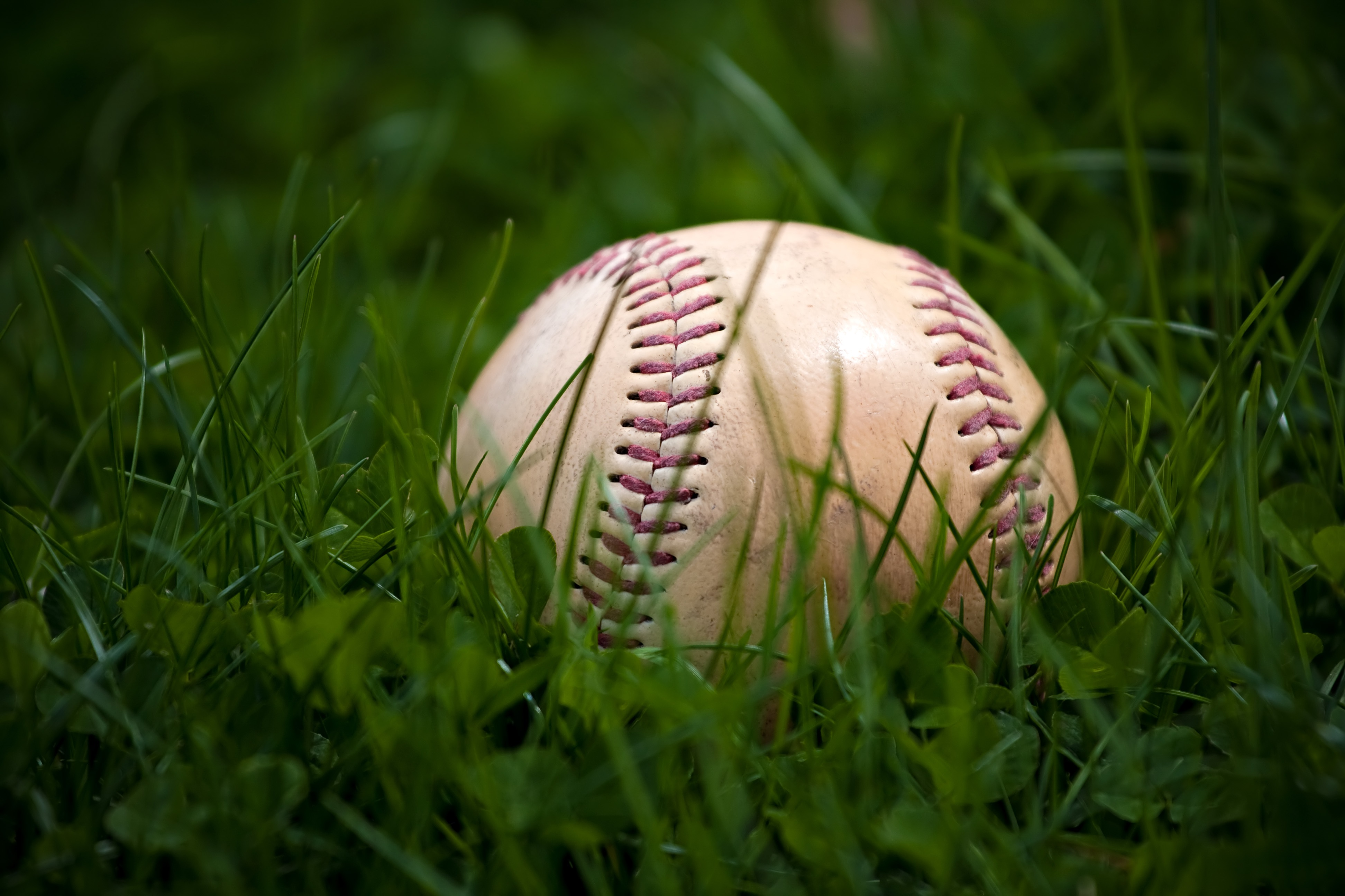 Baseball in Grass in an Article About Youth Baseball and Softball Grants